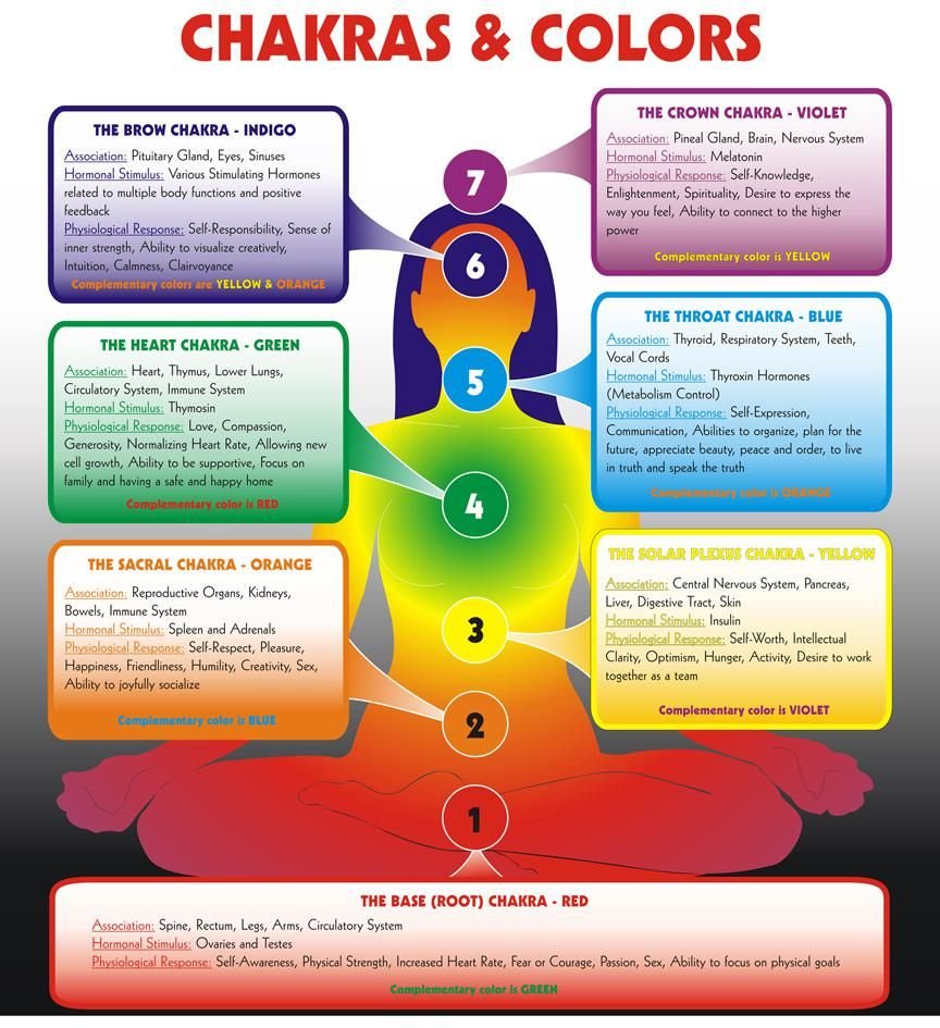Chakras colors color is one of the languages of the soul yoga chakras colors color is one of the languages of the soul geenschuldenfo Images