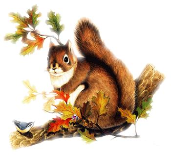 image de paysage d'automne - Recherche Google