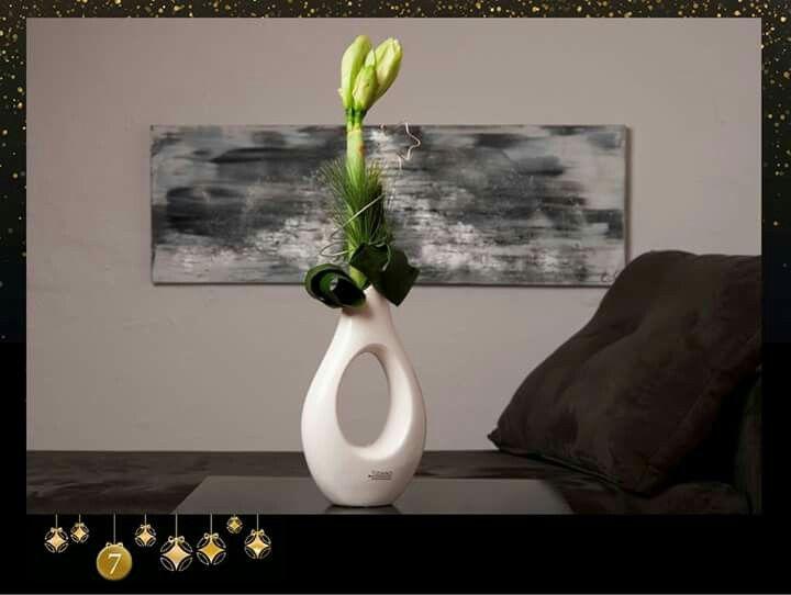 amaryllis k nigin der blumen zu weihnachten. Black Bedroom Furniture Sets. Home Design Ideas