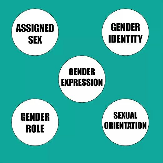 Relationship between gender roles and sexuality