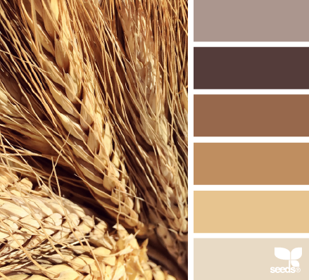 Wheat Tones Paint Colors And Techniques House Color
