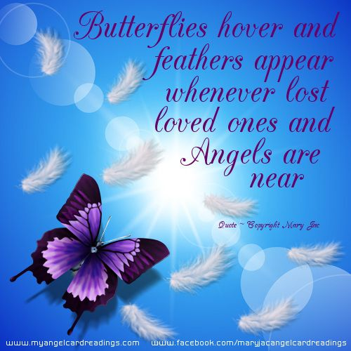 Click here for more quote images about Angel signs | Quotes