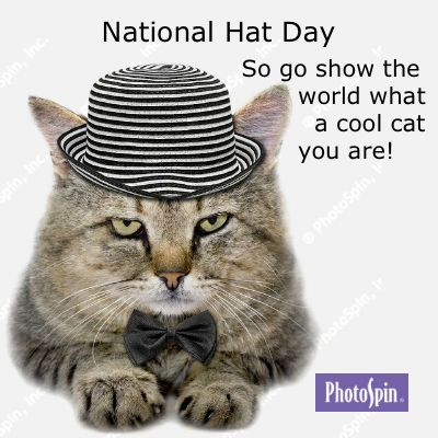 Hang On To Your Hats And Celebrate In Style January 15 Is National Hat Day So Wrap Your Noggin Around This Holiday And Cover Yo Cat Day I Love Cats Fur Kids