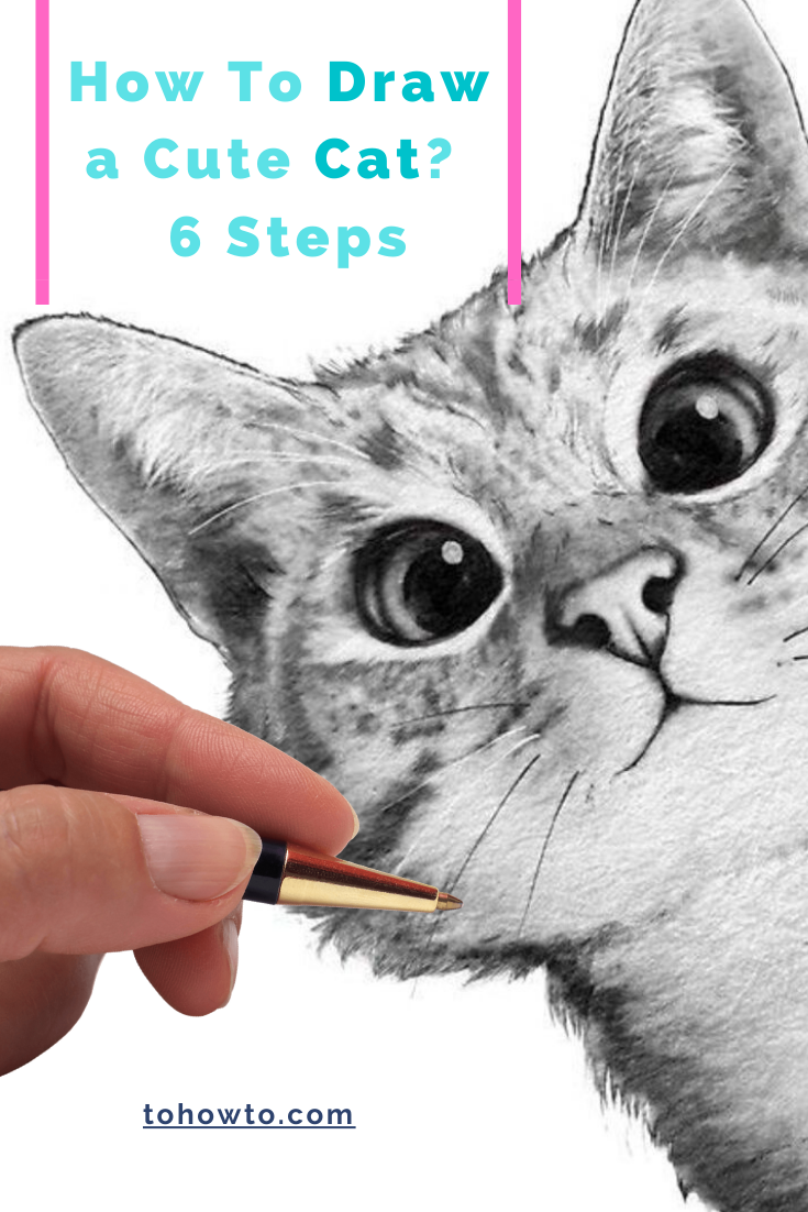 Learn How To Draw a Cute Cat in 6 Steps #cardrawing #drawcat #cat #cats #cutecat