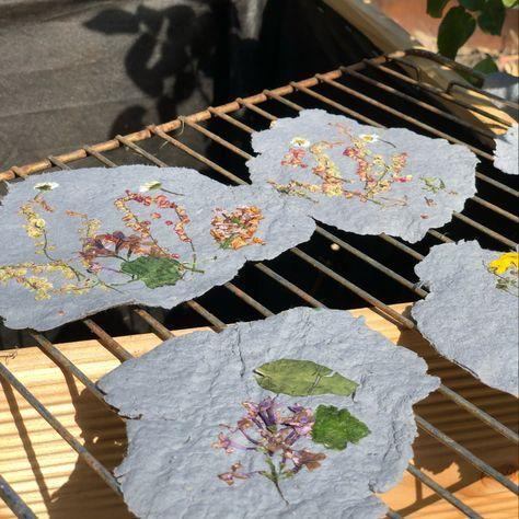 Mit Kindern Papier selber herstellen - Papierschöpfen mit Trockenblumendekor - Geborgen Wachsen