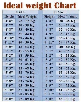 ideal weight Chart wwwinfiya Pinterest Weight charts - ideal weight chart