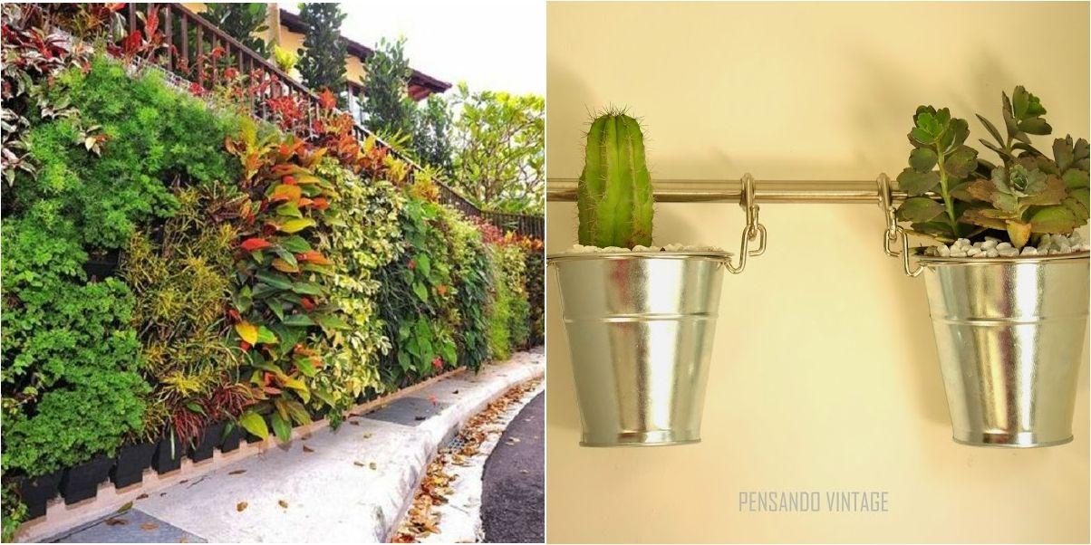 8 tipos de jardín vertical para hacer en casa y cómo conseguirlo