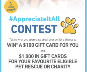 Win A 100 Pet Valu Gift Card More Gift Card Pets Cards
