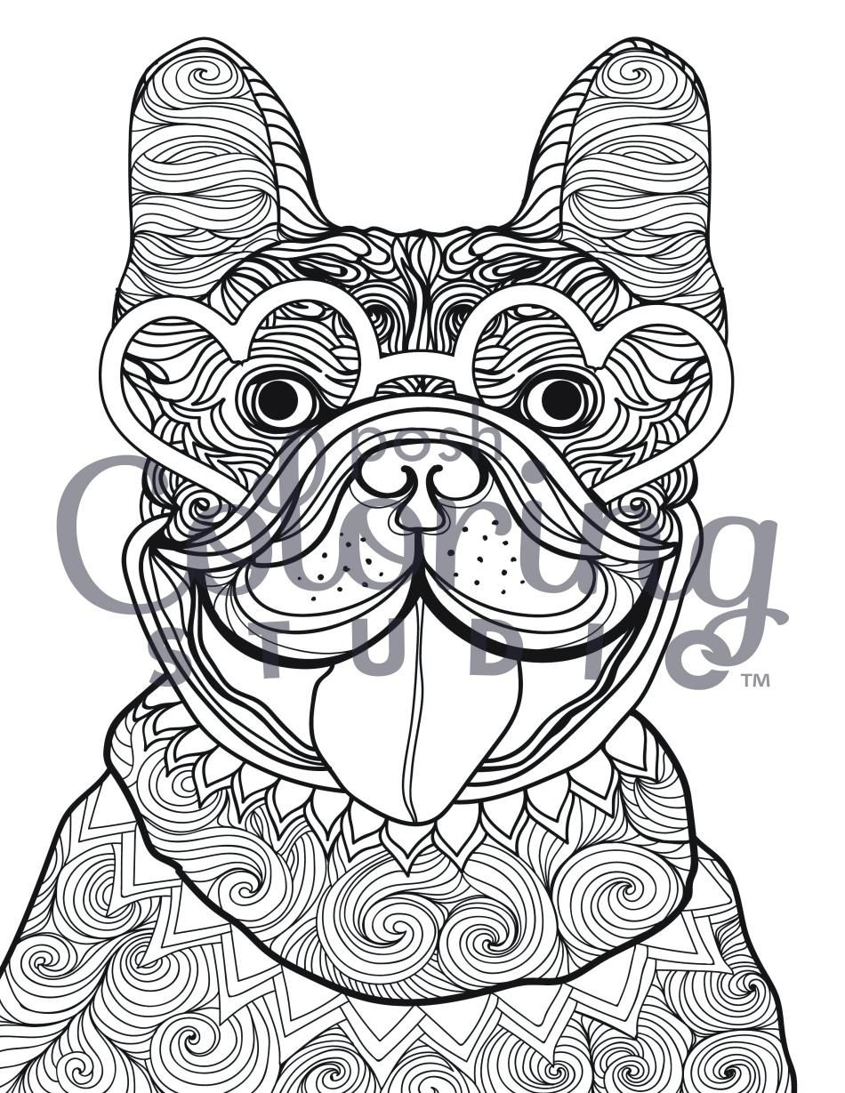 Bulldog With Heart Shaped Glasses Posh Coloring Studio