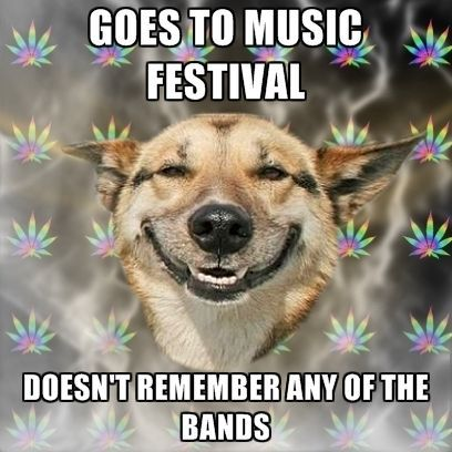 5d439649fd261f769eda0392bb6d4716 haha d fun music meme festival funny music stuff
