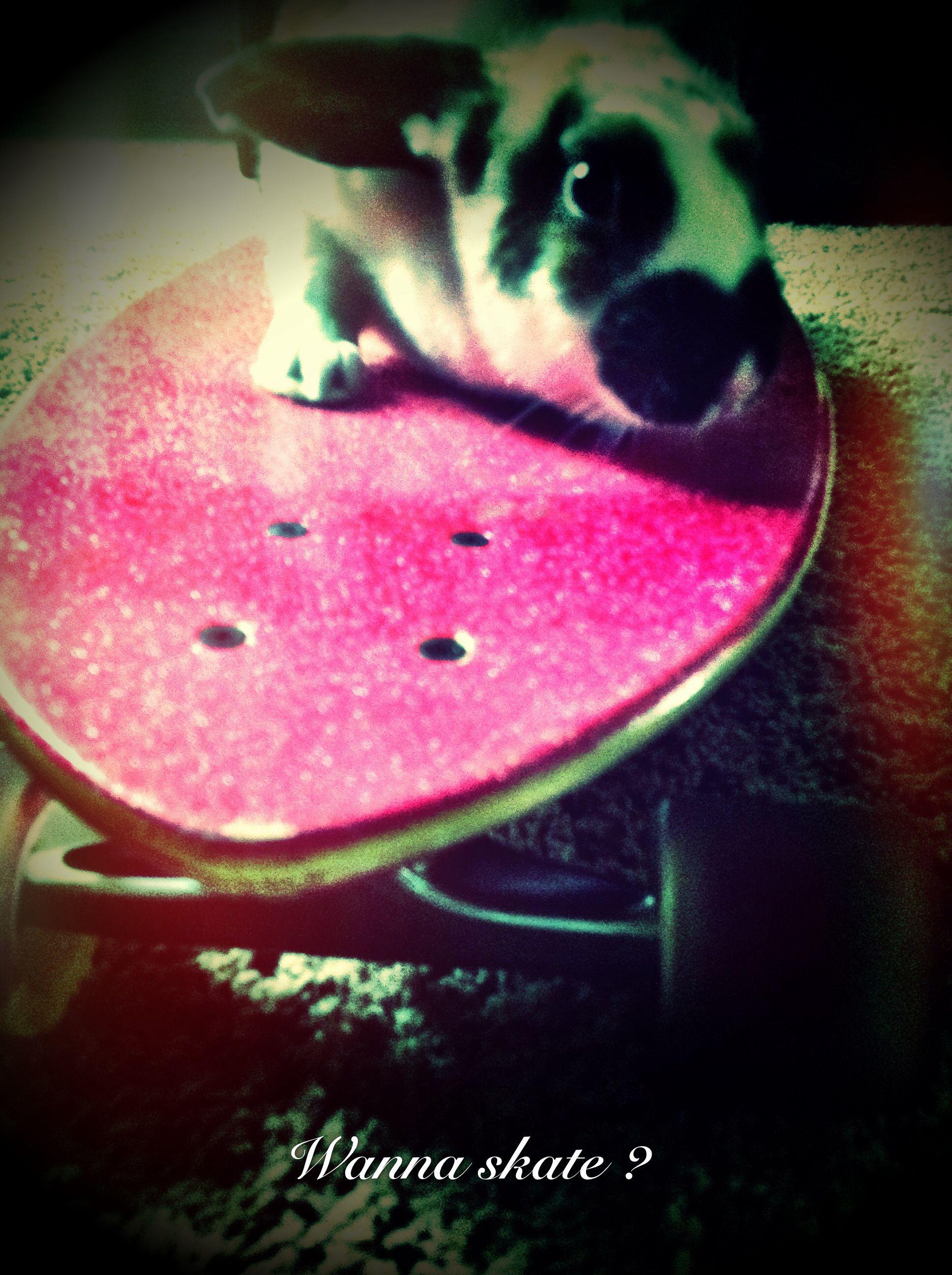 Wanna skate?