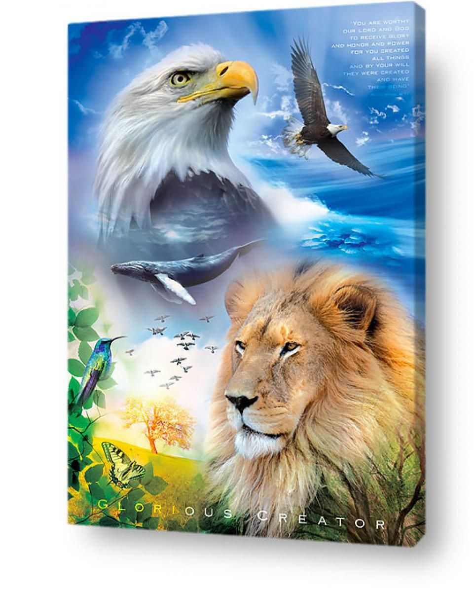 Find Christian posters and religious posters here. Choose from the best Christian Jesus & Bible posters for youth & teens in the world. Christian Posters, Christian Wall Art, Eagle Painting, Eagle Pictures, Lion Poster, Poster Poster, Lion Wallpaper, Prophetic Art, Lion Of Judah