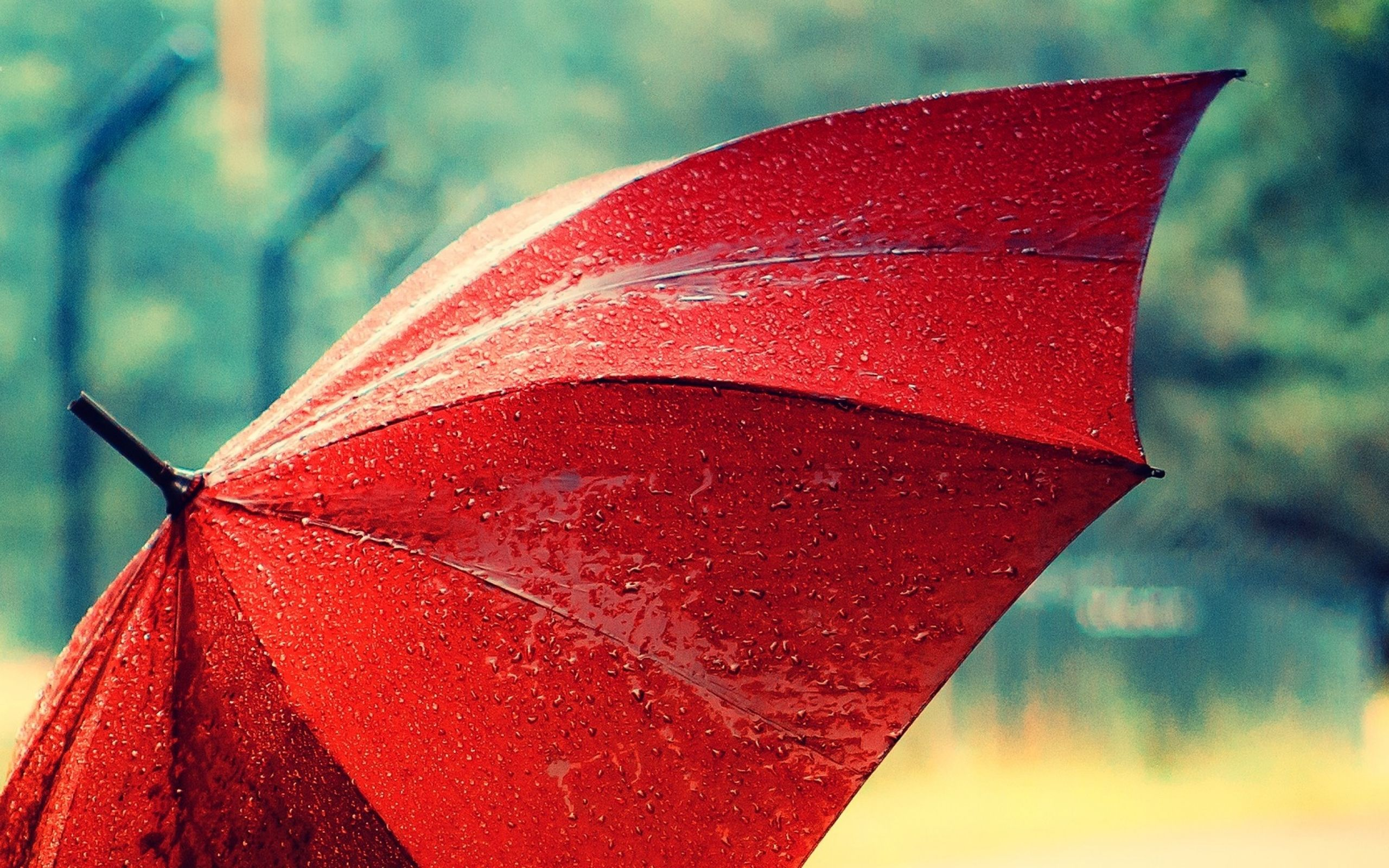 Umbrella Wallpaper Rain Wallpapers Red Umbrella Umbrella