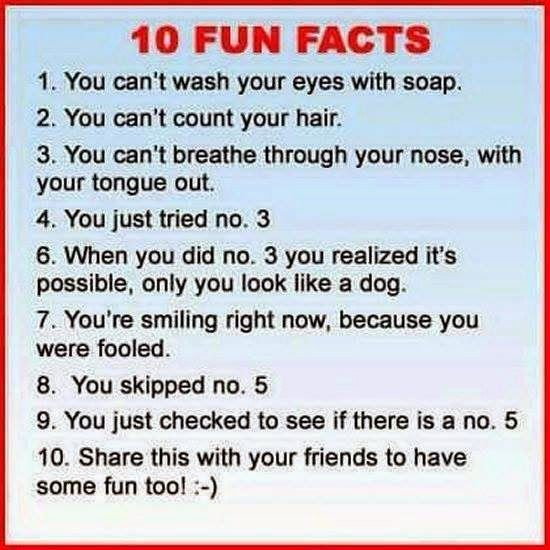 10 FUN FACTS  1. You can't wash your eyes with soap.  2. You can't count your hair.  3. You can't breathe through your nose, with your tongue out.  4. You just tried no. 3  6. When you did no. 3 you realized it's possible, only you look like a dog.  7. You're smiling right now, because you were fooled.  8. You skipped no. 5  9. You just checked to see if there is a no. 5  10. Share this with your friends to have some fun too!:-)