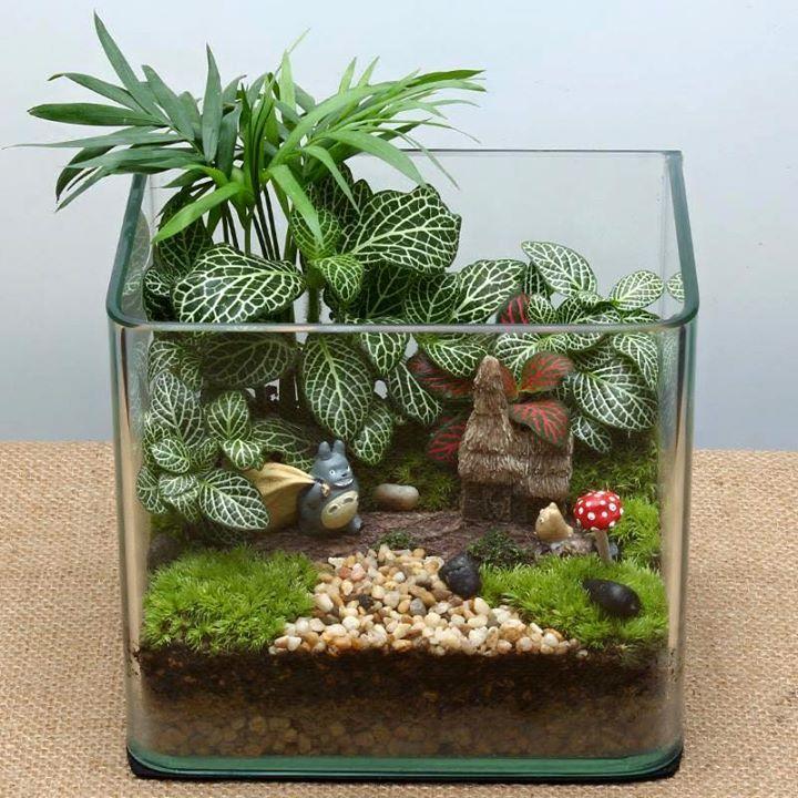 totoro terrarium planting pinterest garten pflanzen und mini garten. Black Bedroom Furniture Sets. Home Design Ideas