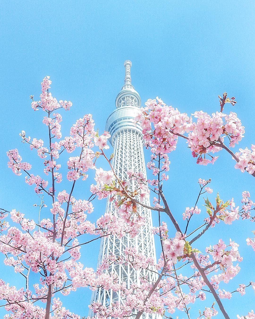 Aesthetic Japan, Tokyo Skytree, Eiffel
