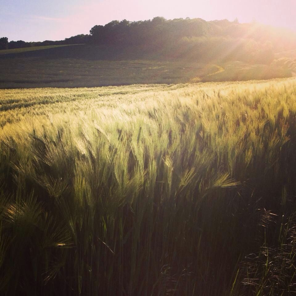 Pin By LA Social Fashionista On COUNTRY LIFE IN FRANCE
