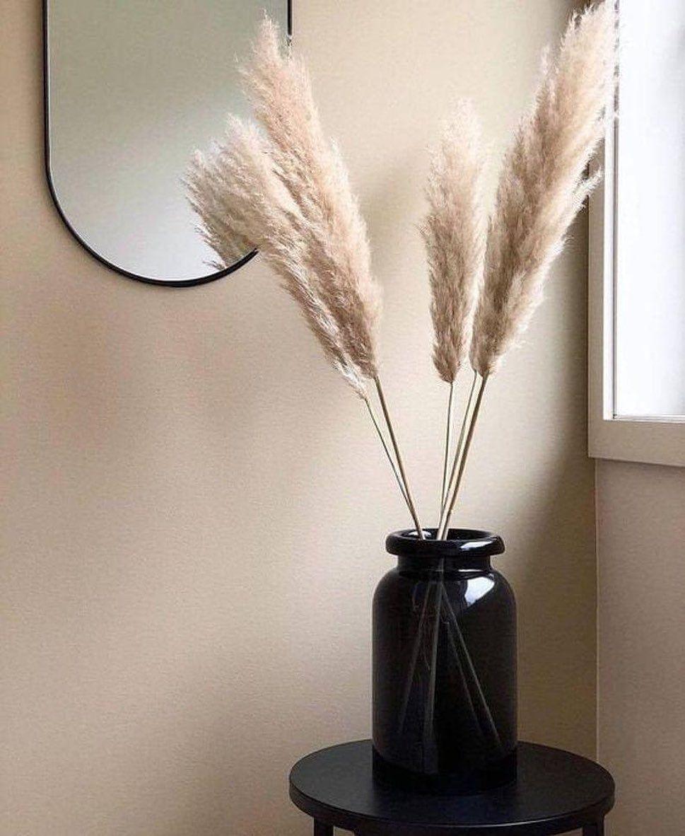 Hier Koop Je De Mooiste Pampas Pluimen Decoratie Klein Appartement Huis Ideeen Decoratie Woonkamer Decoratie