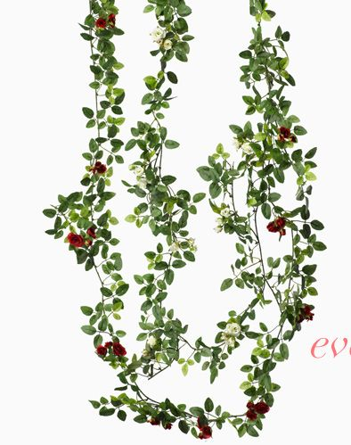 Jamali Floral U0026 Garden Supplies | Floral And Decorative Products