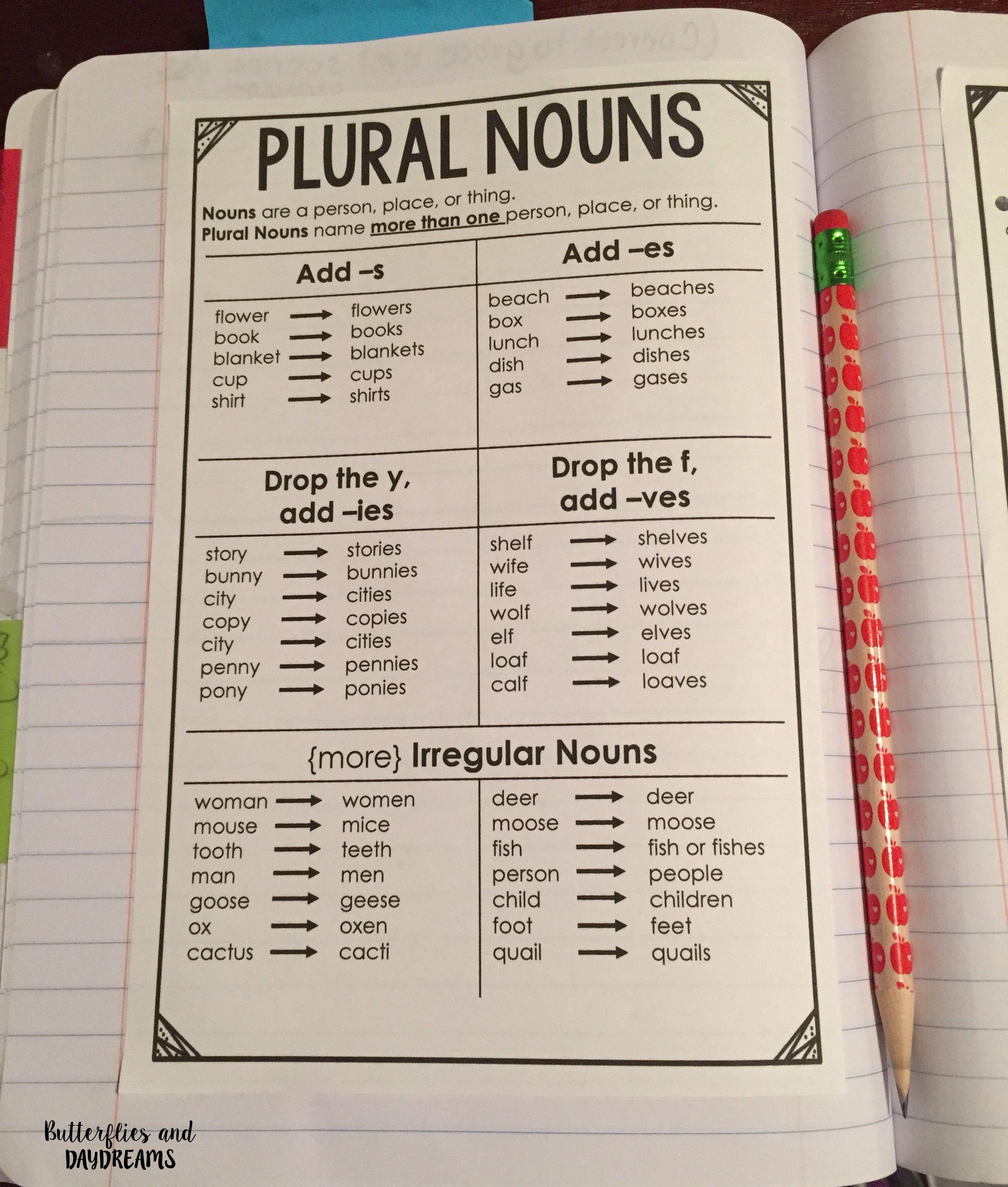 Grammar Amp Vocabulary Notebook Charts