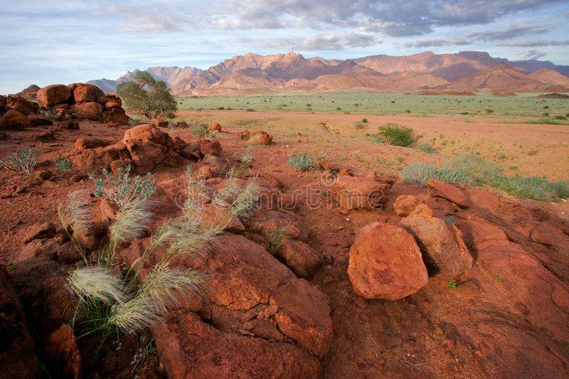 Desert Landscape Brandberg Mountain Namibia Desert Landscape At Sunrise Bran Ad Brandberg Mountain Desert Desert Landscaping Landscape Grassland