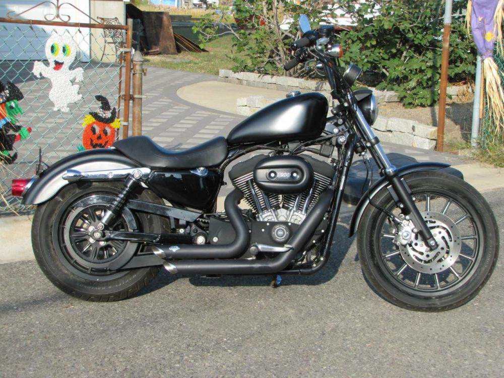 runs like a scalded dog. | 1999 harley davidson sportster 1200