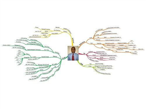 51 Awesome Resume Mind Map Ideas To Copy Mind Map Mind Map Examples Resume Tips