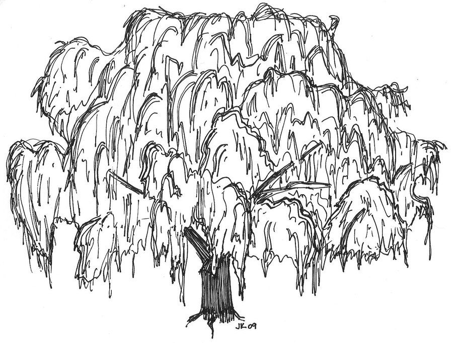 tree line coloring pages - photo#25