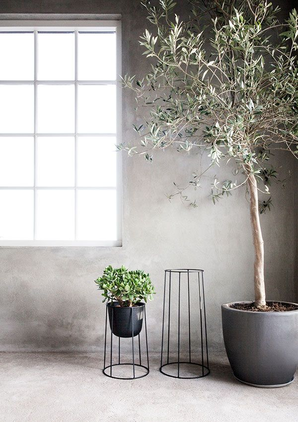 Wire Pot Frames. by Norm.Architects | Landscaping/Outdoor ...
