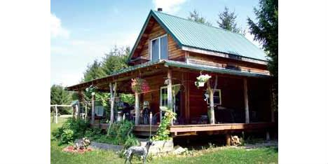 Cheap Eco Houses Timber Cabin 1 Debby Seabrook Pinterest