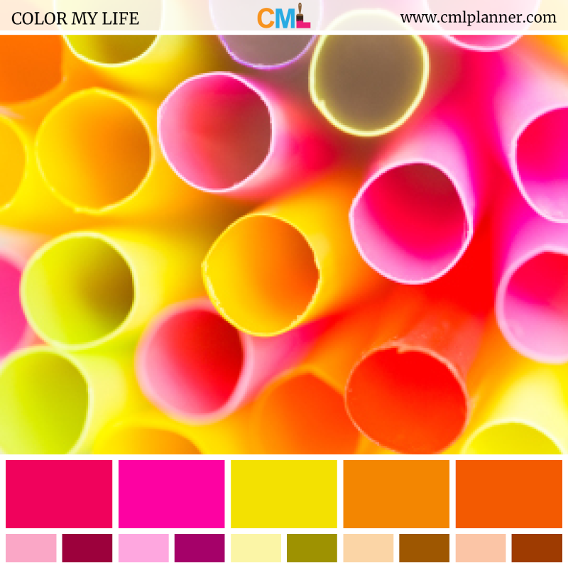 Color Palette #091518 - Color Inspiration from Color My Life
