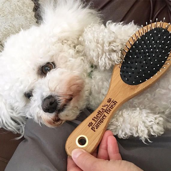 Dog Cat Grooming Brush Personalised With The Pets Name Engraved