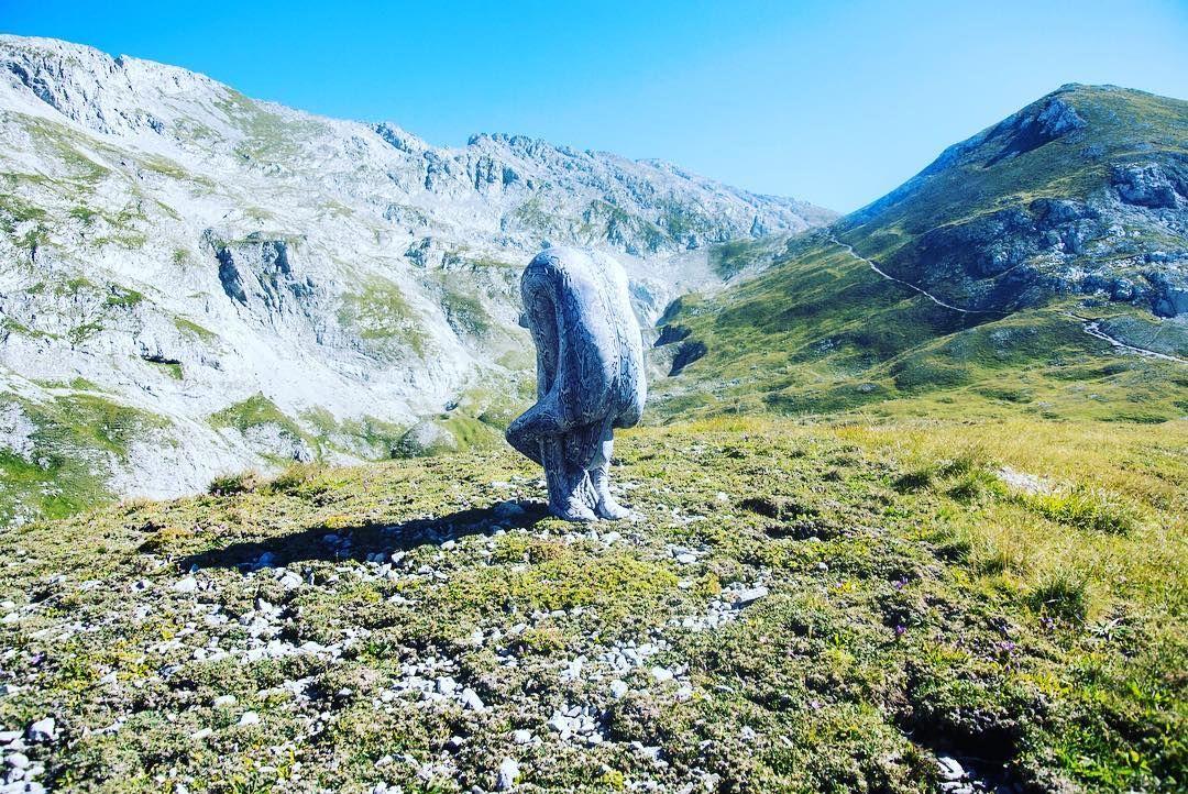 Bergwesen oder Natternhemd II, Hochschwab Massiv, August 2016 Nagl…