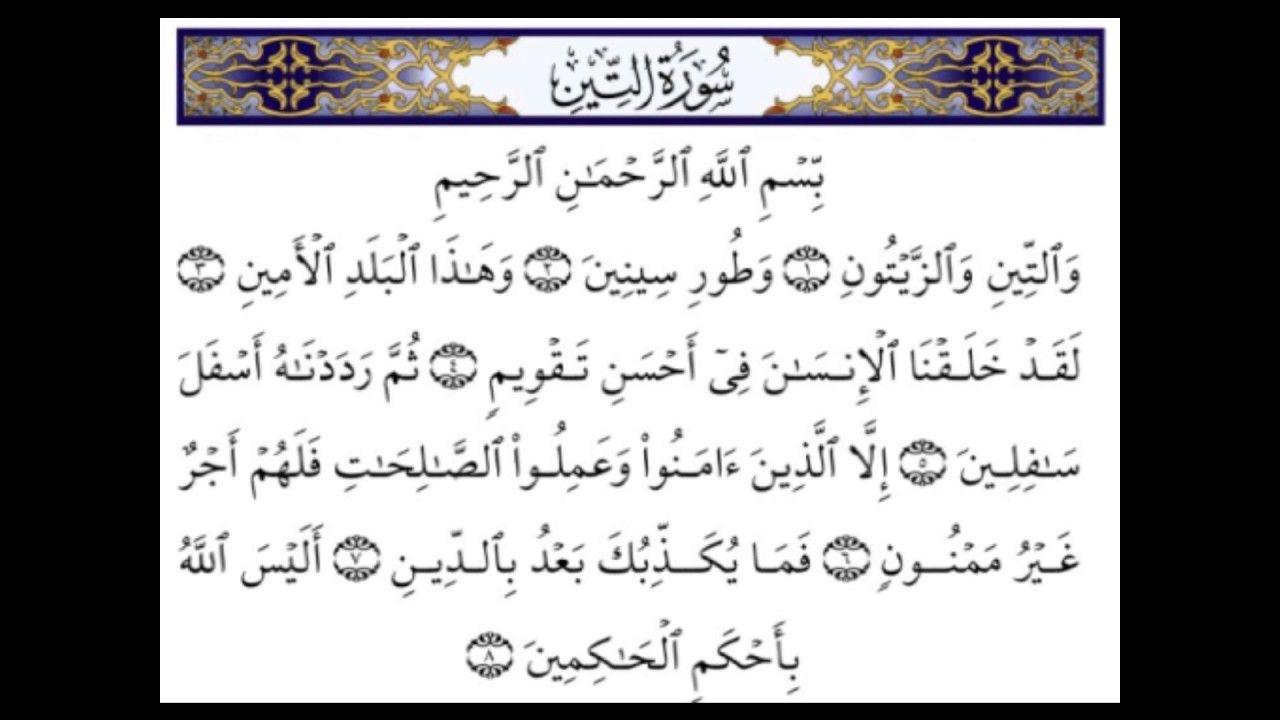 التفسير الميسر سورة التين أيمن أبو النصر Arabic Calligraphy Calligraphy