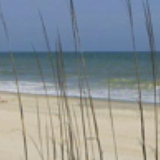 Myrtle Beach~ yup we camp there also! The kids favorite vacation!
