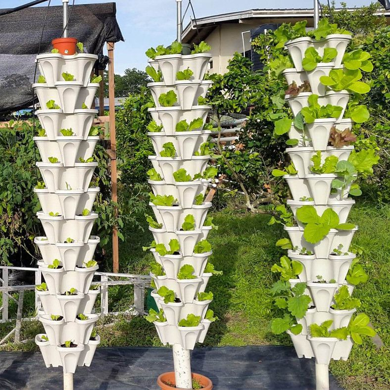 Tomatoes Potato Grow Bag Fruits Vegetables Planter Pots Breathable Nonwoven Cloth With Strap Handles Plants Plant Holders Vegetable Planters
