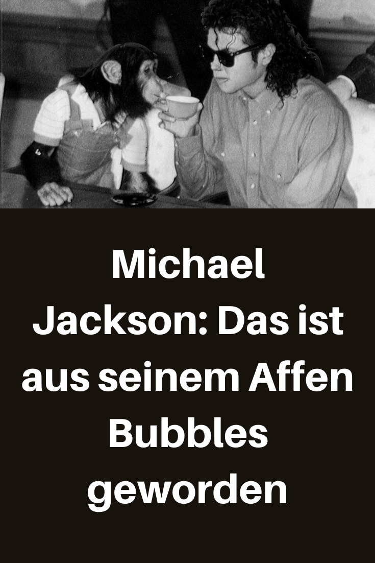 Michael Jackson Das Ist Aus Seinem Affen Bubbles Geworden Michael Jackson Witze Zum Totlachen Witzige Spruche