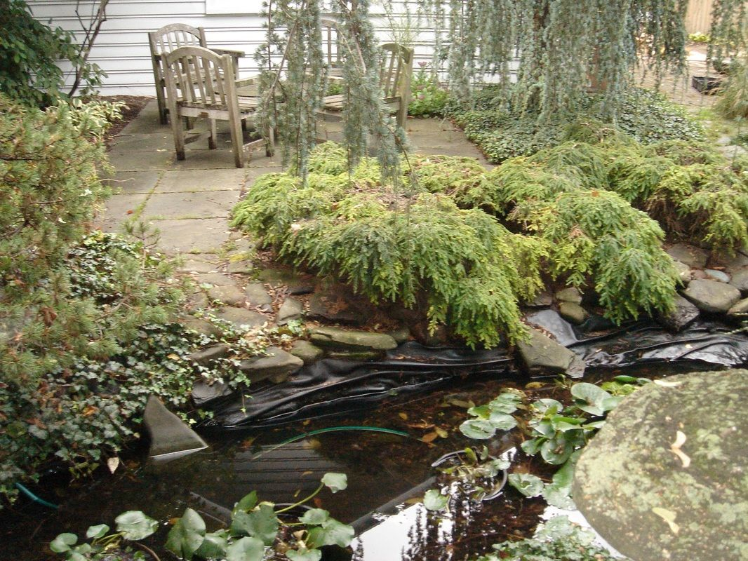 if your pond liner is more than 20 years old or you are