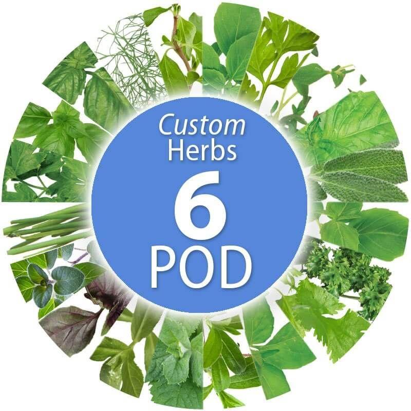 Custom Herb Seed Pod Kit 6 Pod Herb Seeds Seed Pods 400 x 300
