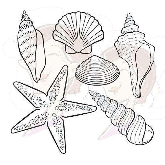 Digital Seashell Stamps Decor Starfish Summer Beach Vector Clip ...
