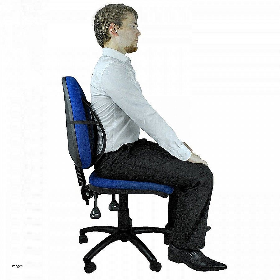 Posture Support For Office Chair Best Home Furniture Check More At Http
