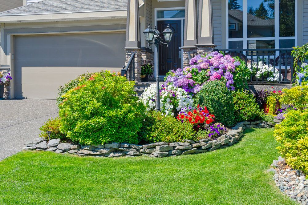 Decorative Plants For Front Yard Mycoffeepot Org