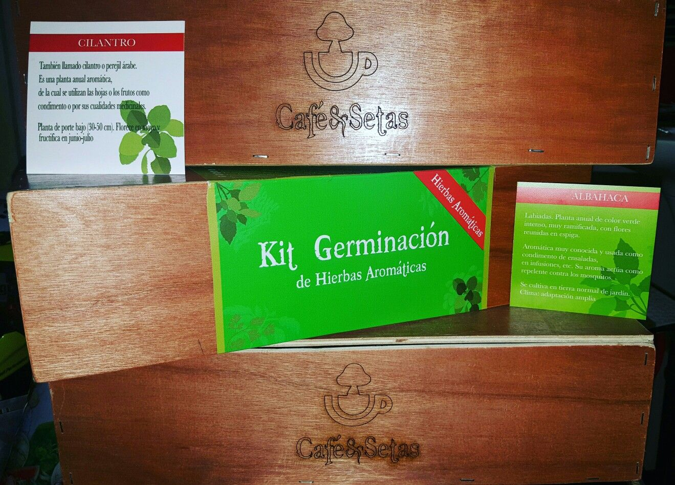 Home garden kit  new kits plant crops my first garden at home office  Champiñones