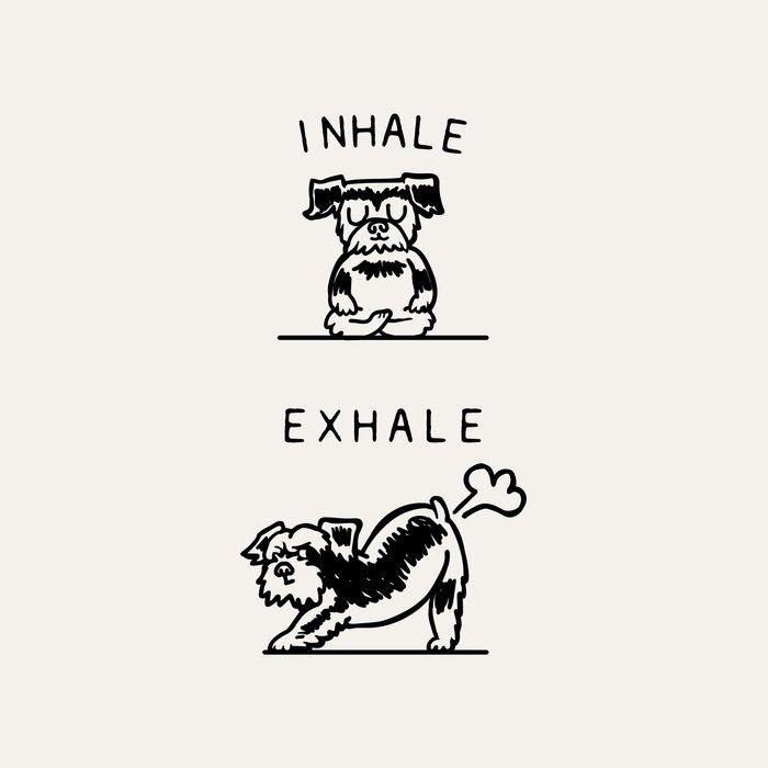 Inhale Exhale Schnauzer King Size Pillow Sham by Huebucket - STANDARD SET OF 2