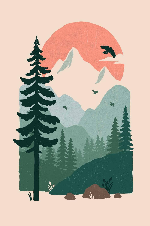 Wild Oak: Photo
