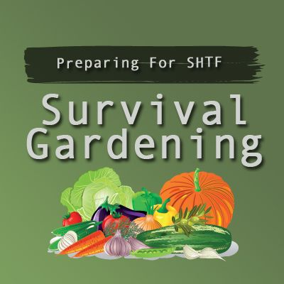 Pinterest board dedicated to gardening. You can find my other posts dedicated to emergency preparedness at http://prepforshtf.com