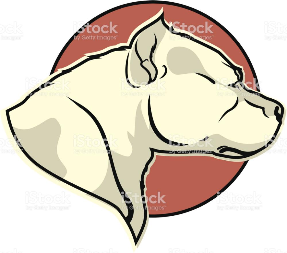 Пин на доске TATOO vector illustration ORNAMENT