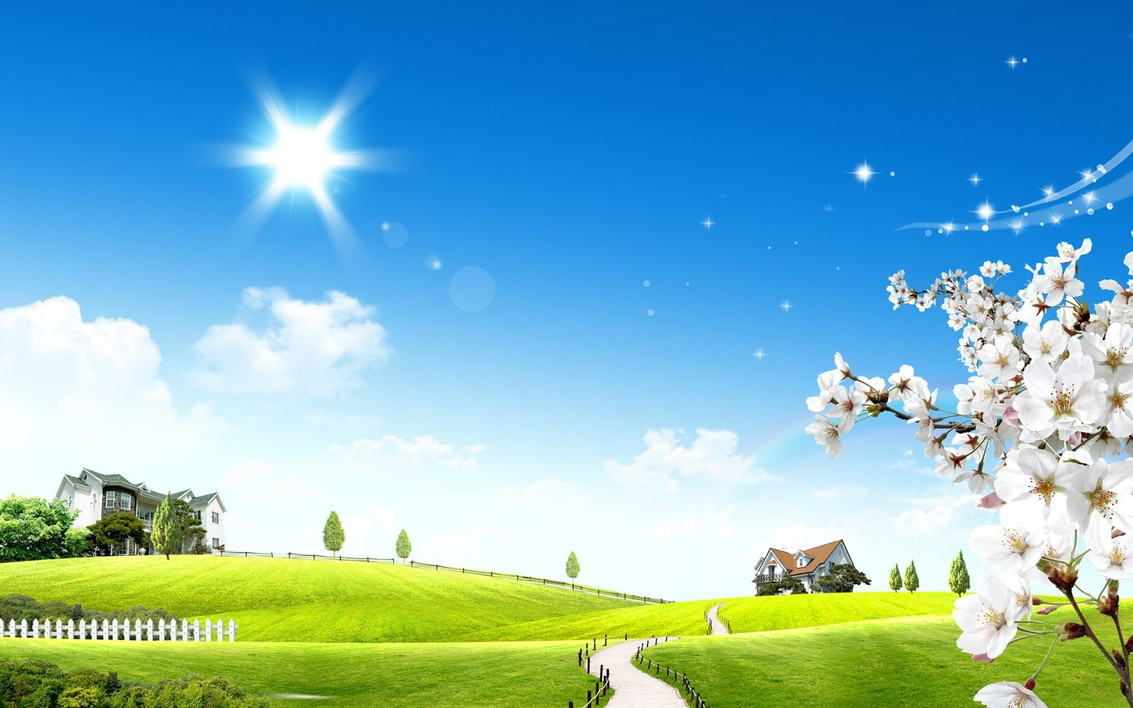 3d Meadow With A Lovely Sunny Day Beautiful Wallpapers For