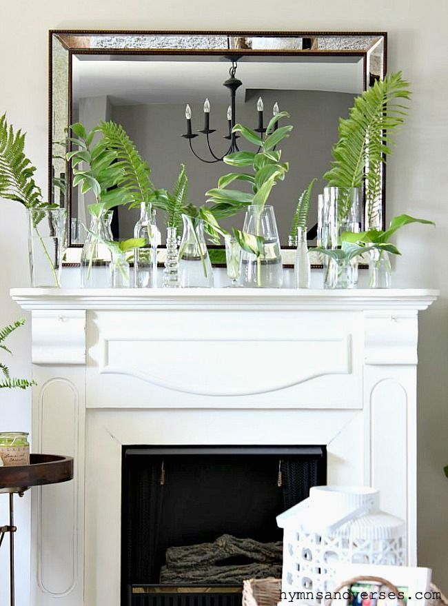 On Trend Botanical Home Decor