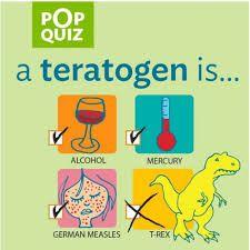 Teratogeeni